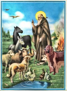 Associazione L'Arca di Sant'Antonio Abate